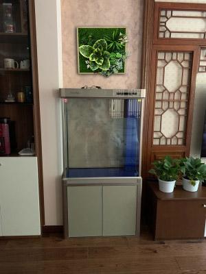 Aquatic Garden System 40*80cm