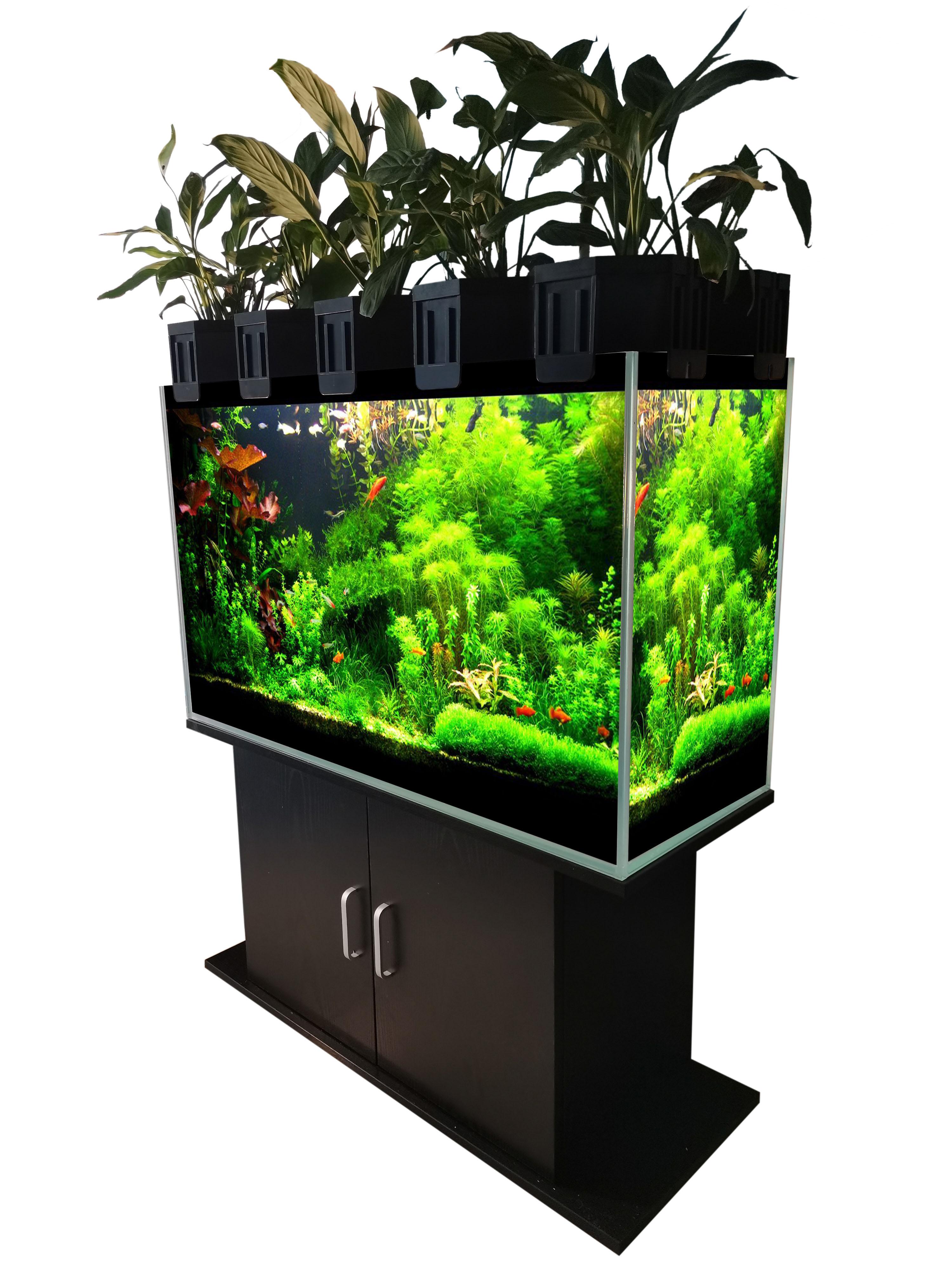 New design aquaponic aquarium system for home