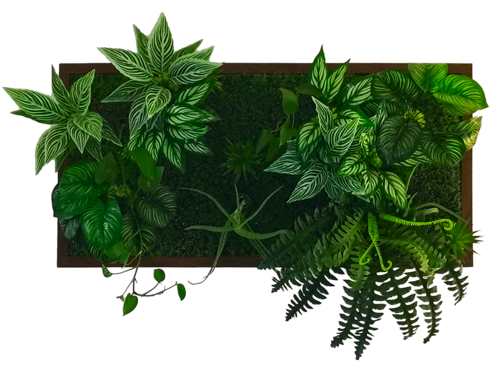 3D living plant panel Design series DVE008-PB50100