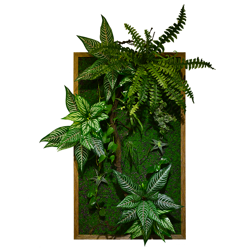 3D living plant Panel Design series DVE001-PB60100