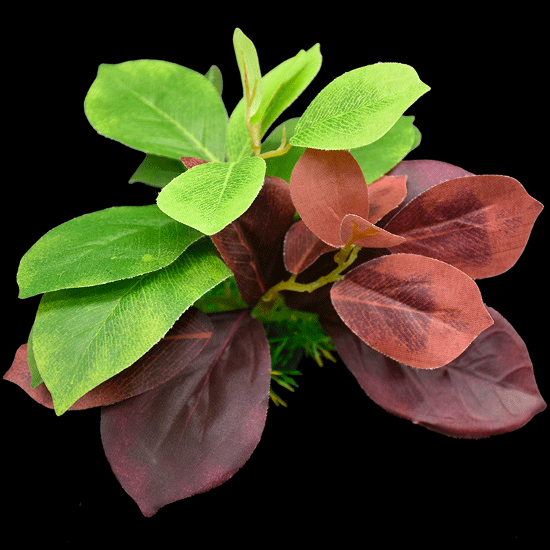 Mixed plants AS-F2043