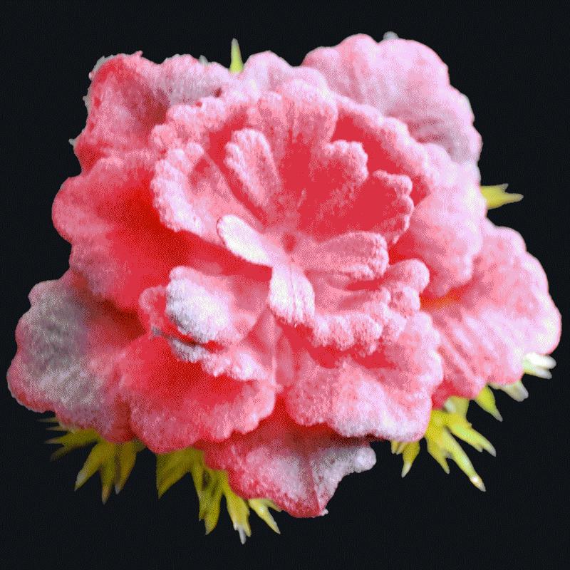 Artificial Succulents AS-S041R