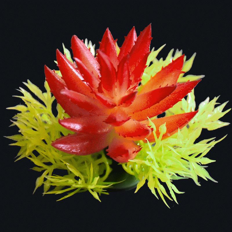 Artificial succulent mini aloe-Red AS-S043R