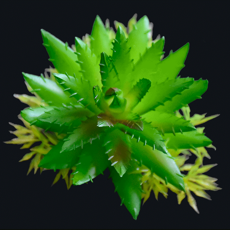Fake pineapple succulent pick-Green AS-S045G