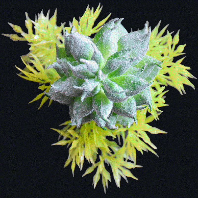 Real touch frost succulent pick-Green AS-S047G