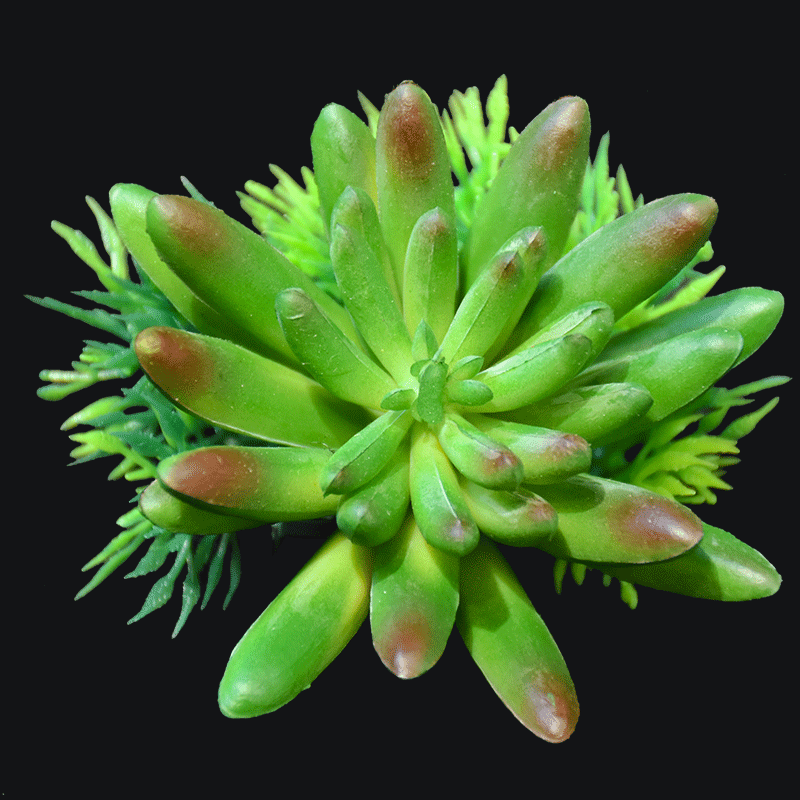 Artificial spike aeonium succulent pick in Green AS-S007G