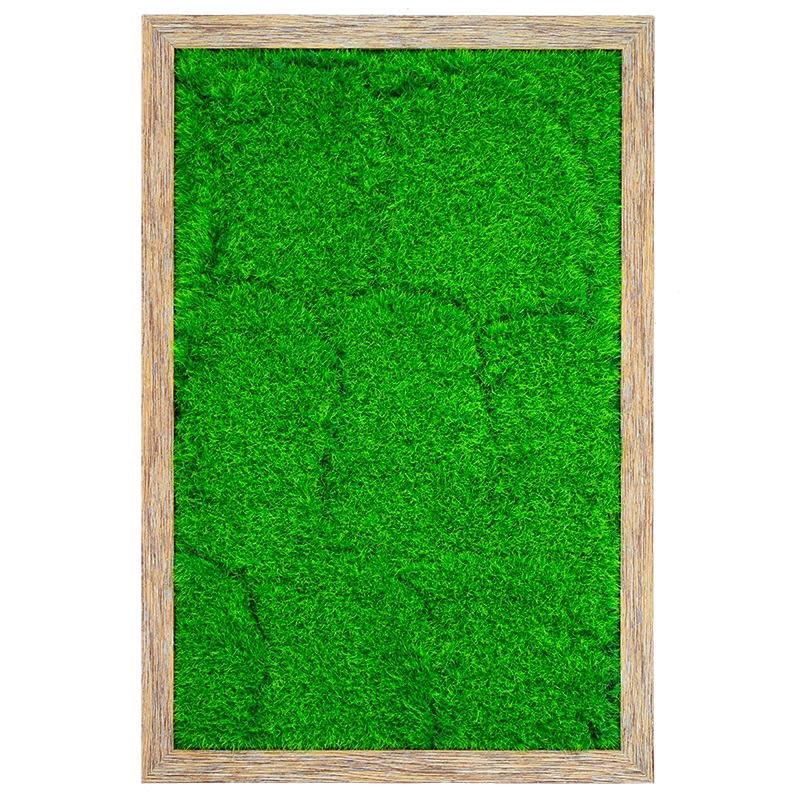 3D living plant panel DIY 40*60cm