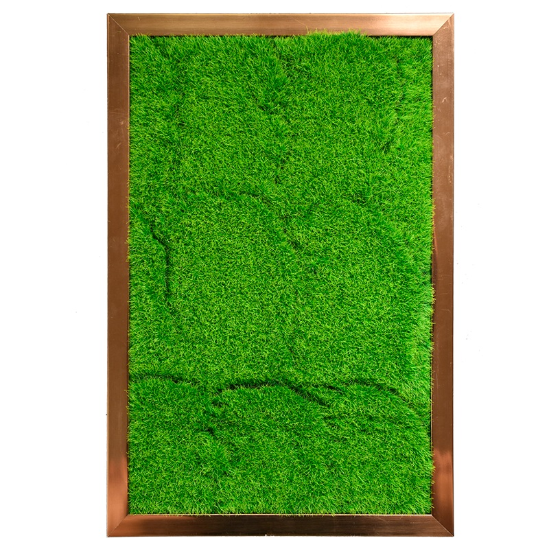 3D DIY living plant panel with golden frame 40*60cm