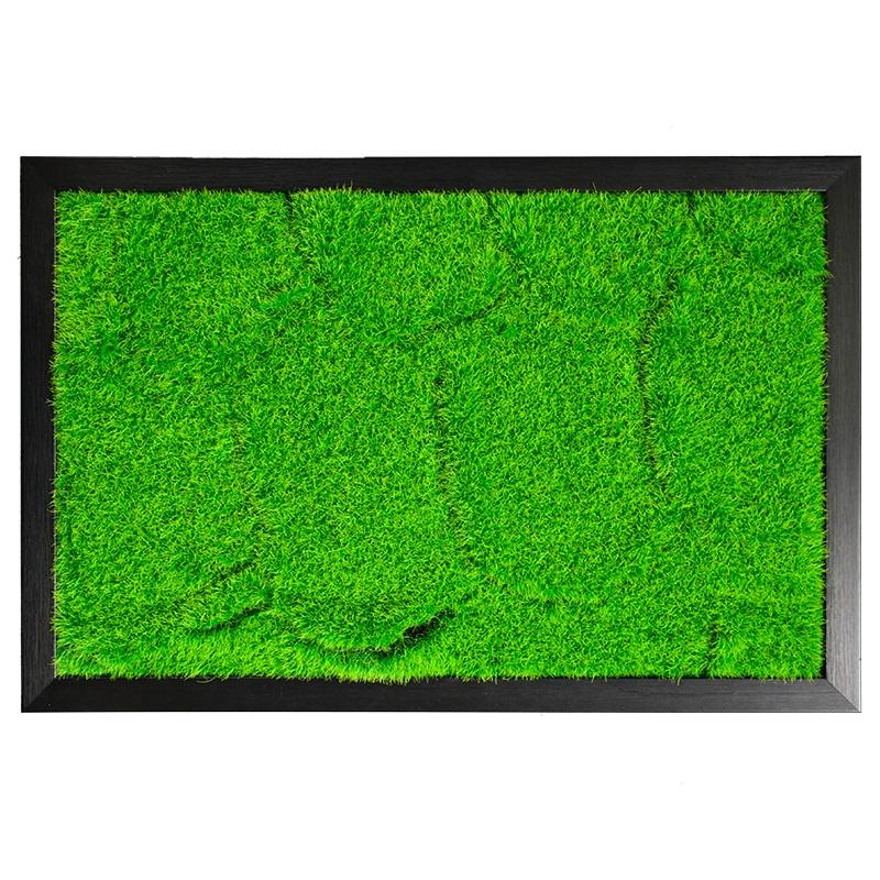 3D DIY living plant panel with black frame 40*60cm