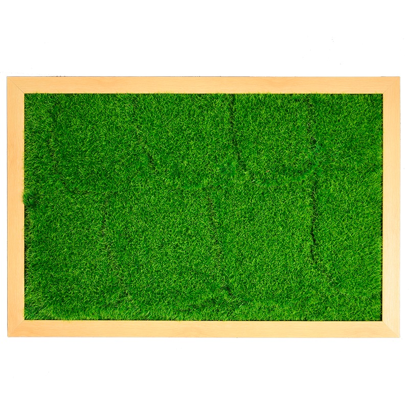3D DIY living plant panel with maple frame 40*60cm