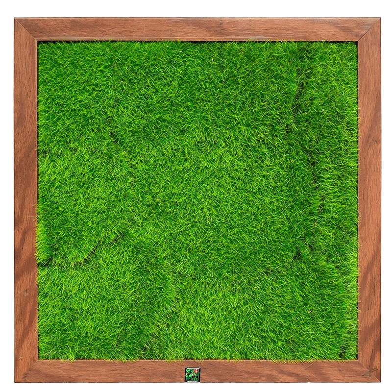 40*40cm DIY living plant panel
