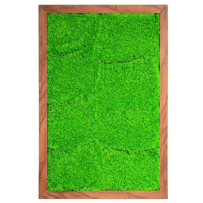 40*60cm DIY living plant panel