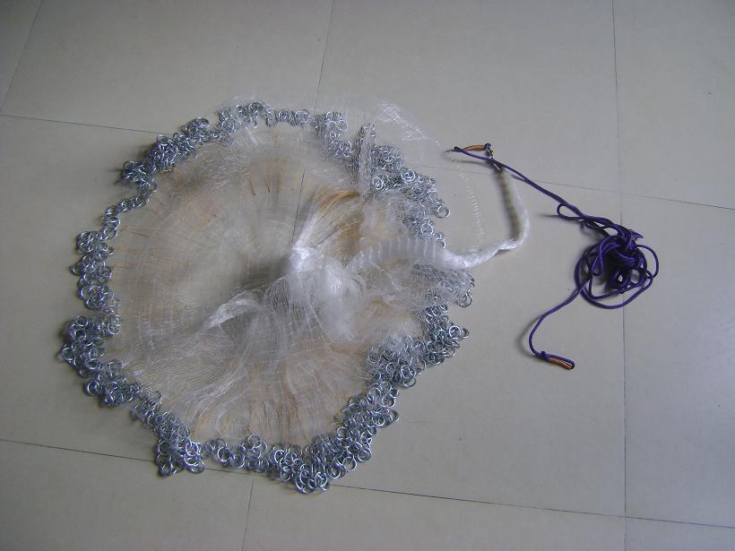 Fish Net 02