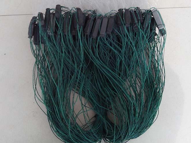 Fish Net 08