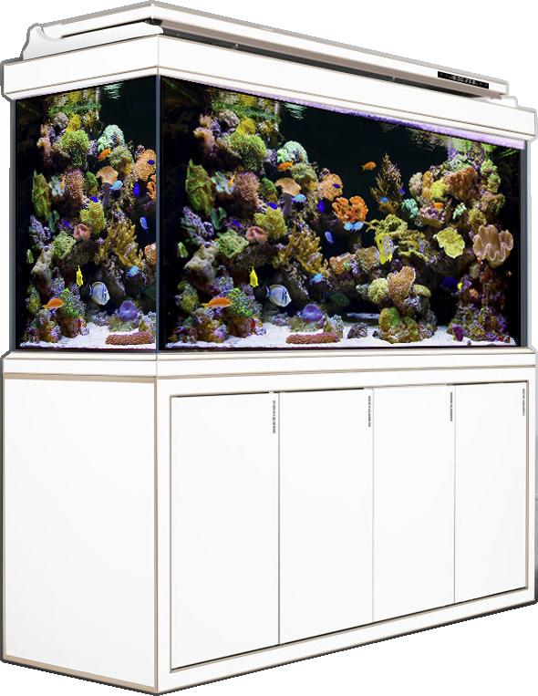 H2FU series Partition screen bottom filter aquarium