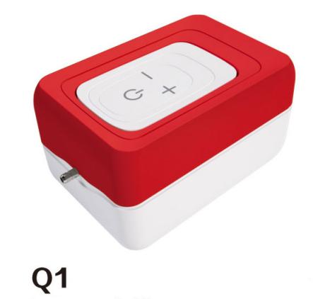 Q1/Q3/Q5 Air Pump