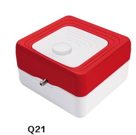 Q21 Air Pump