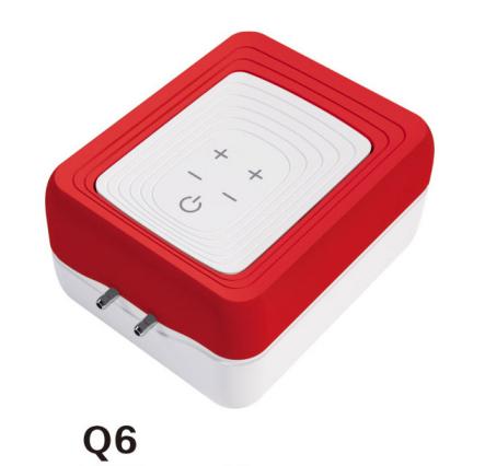 Q6 Air Pump