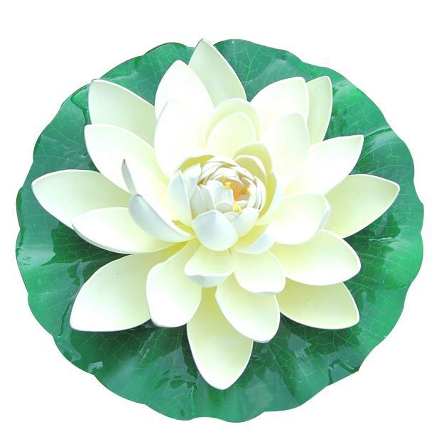 Pond Foam Lotus